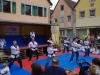 altstadtfest_2016_60-jpg
